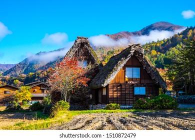 Shirakawago village in autumn with maple, Japan