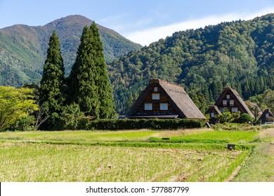 Shirakawago village in Japan