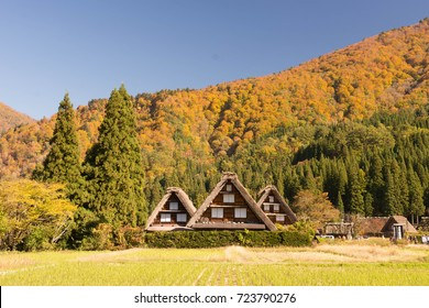 shirakawagovillage with mountain in autumn