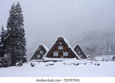 shirakawagovillage in winter