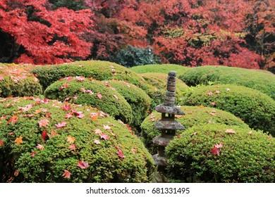 Shisen-do garden