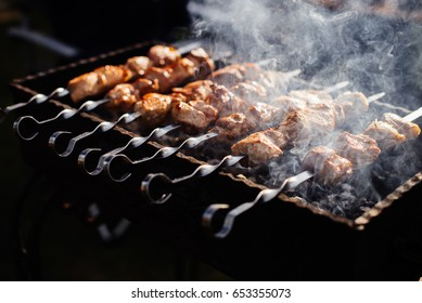 Shish kebab roasting on the grill. BBQ party. Close-up.