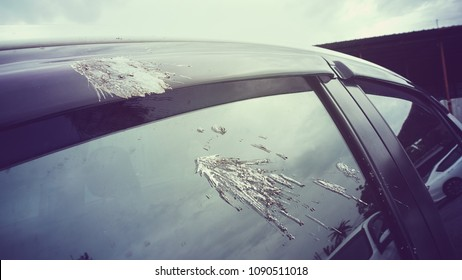 Shit bird dropping on your car.