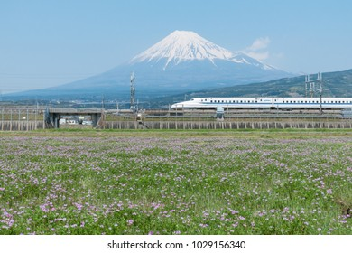 Shizuoka - Apr 14 : Shinkansen bullet train and Mountain Fuji on 14 Apr 2017 , Shizuoka ,Japan.
