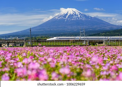 SHIZUOKA JAPAN - MAY 05 2017: Shinkansen or JR Bullet train running pass through Mt. Fuji and Shibazakura at spring. Super high speed train N700 can transit between Tokyo and Osaka.