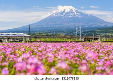 Shizuoka, Japan - May 05, 2017:  JR Shinkansen moving through Mountain Fujisan and Shibazakura at spring. N700 Bullet train transit between Tokyo and Osaka operated by Japan Railways company.