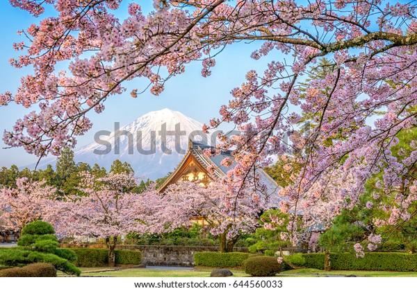 Shizuoka, Japan with Mt. Fuji in spring.