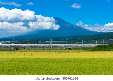 Shizuoka prefecture, Japan - September 3, 2016: Bullet train, Shinkansen travels below Mt. Fuji with bright ripe rice field, paddy on the foreground. Iconic Japanese sightseeings