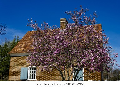 Shober House in Historic Old Salem Museum and Gardens