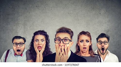 Shocked man in glasses and his scared friends pose against gray wall background. Emotional horrified group people see something unexpected. Human reaction concept