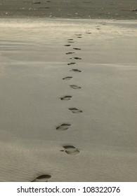 Shoe-print on the Black sand beach of New Zealand