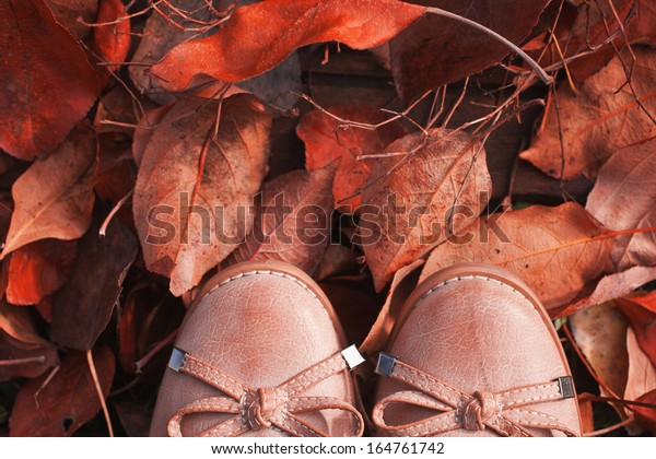 shoes on a path from the fallen autumn leaves