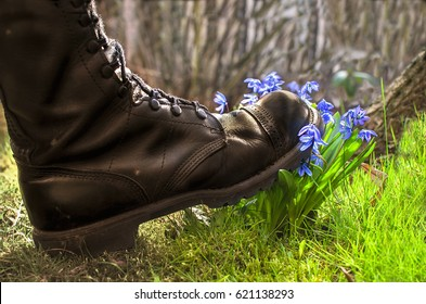 Shoes ruthlessly tramples the living flower