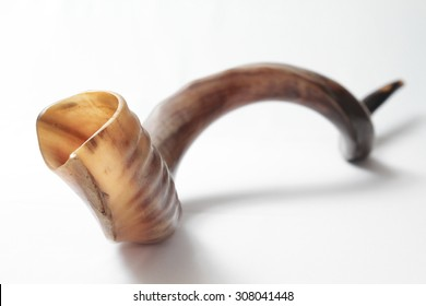 shofar (ram horn)  isolated over white background