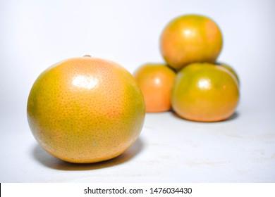 Shogun orange on white background
