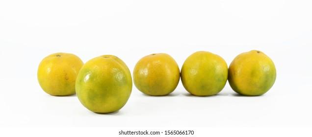 Shogun orange on white background. Oranges are high in vitamin C.