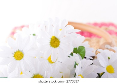 Shoot of nice abstract composition with flowers.