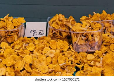 Shop counter with natural fresh chanterelles mushrooms with price tag. Street market of natural products in Europe