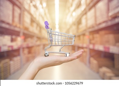 Shop and Store management concept: Hand shopping cart with blur inventory warehouse background