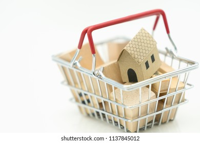 Shopping cart with small house with copy space using as background shopping, rent, loan, mortgage, eco district housing, business concept.
