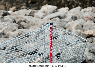 Shopping Trolley Carcass Dumped On Rocky Beach