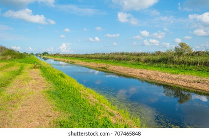 Shore of a canal through the countryside in summer