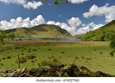 Shore of Crummockwater, English Lake District