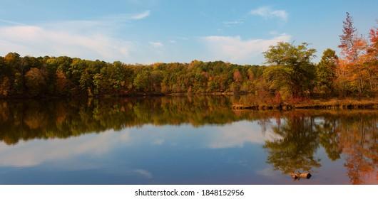 Shore at Falls Lake in North Carolina just as the trees are turning