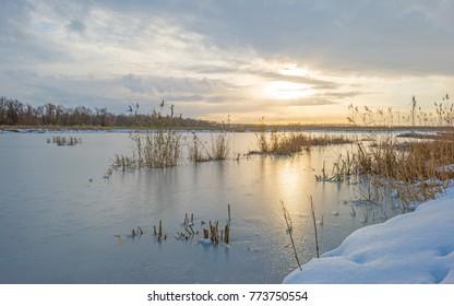 Shore of a frozen lake in a snowy field in sunlight in winter