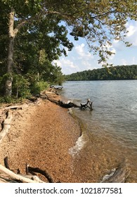 Shore of Lake of the Ozarks