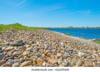 Shore of a lake in spring