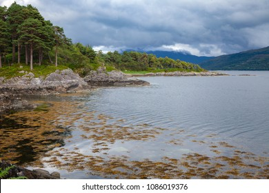 Shore of Loch Sunart at Ardnamurchan peninsula, the longest sea loch in the Highland, Scotland, UK