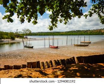 Shore of Paripe river, near Vila Velha - Ilha de Itamaraca, Brazil
