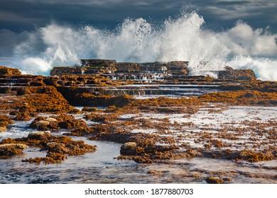 Shore of Tongatapu Island. Nuku'Alofa, Tongatapu, Tonga. - Shutterstock ID 1877880703