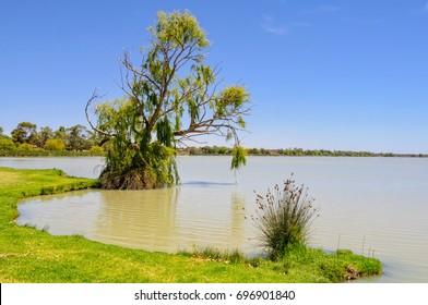 Shoreline of Lake Cullulleraine near Mildura, Victoria, Australia