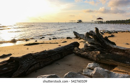 shoreline of mobile bay fairhope alabama with logs and rocks on shore in foreground and pier in background