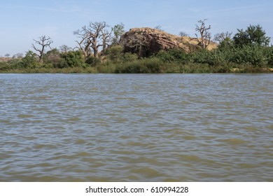 The shoreline of National Park W, Niger, West Africa