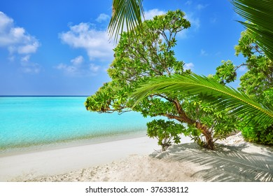 Shoreline of a tropical island in the Maldives and view of the Indian Ocean.