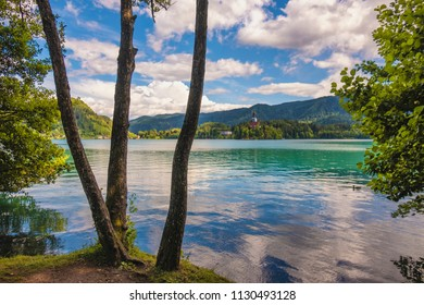 Shores of Bled lake in Slovenia. Famous tourist travel destination