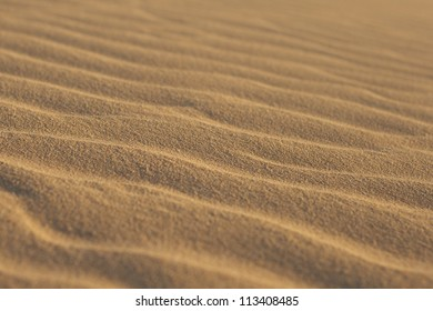 Short depth of field photo of sand ripples