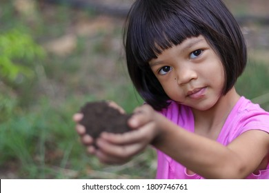 A short haired Asian kid girl, aged 4 to 6 years old, looks cute, is using her hands to pick up the black soil in preparation for planting the seedlings. Black soil is suitable for growing seedlings.
