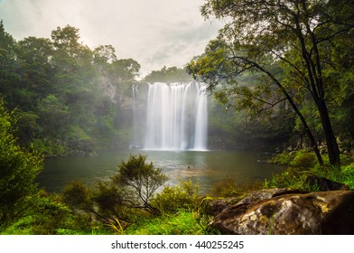 A short walk along the Kerikeri River leads you to the spectacular 27 metre waterfall,Rainbow Falls.