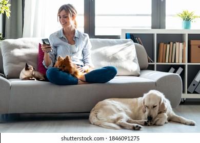 自宅のリビングルームで犬や猫とソファに座りながら、魅力的な若い女性が携帯電話を使って撮影。