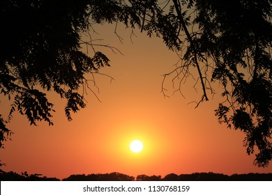 A shot of a Bright Orange Sunset with a tree Silhouette thats bright and colorful west of Hutchinson Kansas USA.