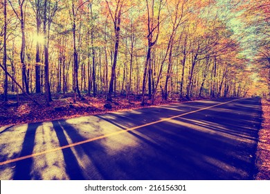 A shot by a rural road with colorful treed landscape on either side during the autumn season.  Filtered for a vintage retro look.