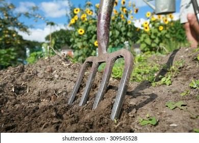 shot of digging at allotment on a bright summers day
