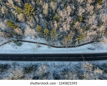 Shot from a drone: Winter forest on a cold sunny morning