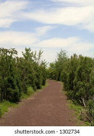 A shot of an empty path with a nice sky.