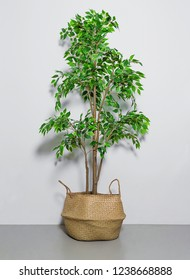 Shot of a Fake house plant in basket