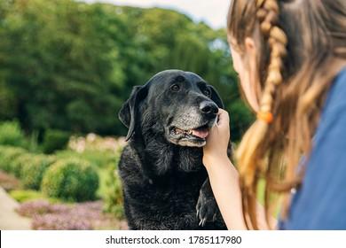Shot of a Girl with her senior black labrador